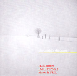 Burn / Thomas / Fell: The Middle Distance (Another Timbre)