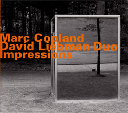 Copland, Marc / David Liebman Duo: Impressions (Hatology)