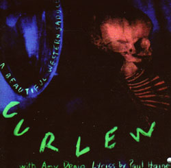 Curlew: A Beautiful Western Saddle/The Hardwood [CD + DVD]