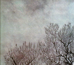 Cymerman, Jeremiah: Under A Blue Grey Sky