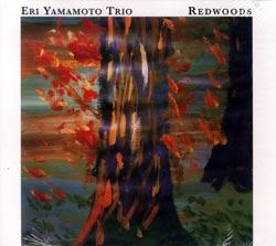 Yamamoto, Eri Trio: Redwoods (Aum Fidelity)