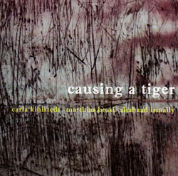 Kihlstedt / Bossi / Ismaily: Causing A Tiger (Les Disques Victo)