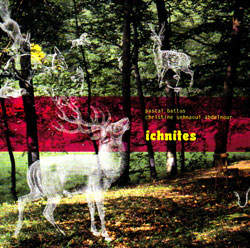 Battus / Abdelnour: Ichnites