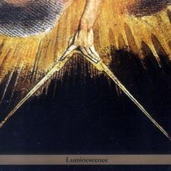 Bergman, Borah Trio: Luminescence (Tzadik)