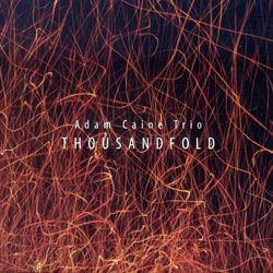 Caine, Adam: Thousandfold (NoBusiness)
