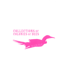 Collections Of Colonies Of Bees: Birds