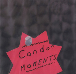 Condor Moments: And Though We're Told We've Got It All, The All We've Got Is Freezing Cold.. (What Delicate)