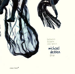 Dessen Trio, Michael : Between Shadow and Space