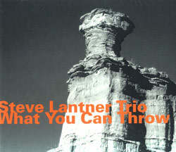 Lantner, Steve Trio: What You Can Throw (Hatology)