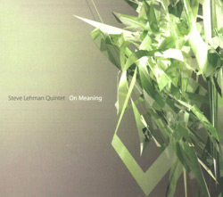 Lehman, Steve Quintet : On Meaning (Pi Recordings)