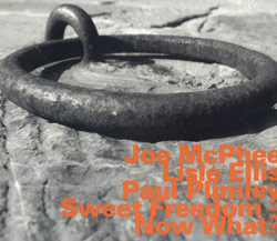 McPhee, Joe / Lisle, Ellis / Plimley, Paul: Sweet Freedom - Now What?