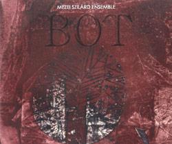Mezei Ensemble, Szilard: Bot (Gyorfree)
