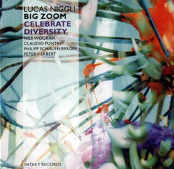 Niggli, Lucas / Big Zoom: Celebrate Diversity