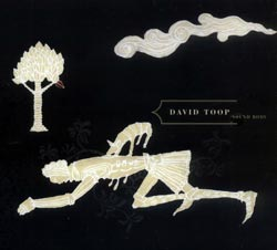 Toop, David: Sound Body