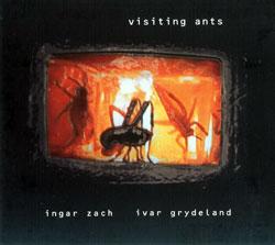 Zach, Ingar  / Grydeland, Ivor : Visiting Ants (Sofa)