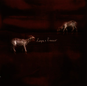 N.O.R.M.A + Cutler, Chris: L'Arpa e L'Asino (The Harp and the Donkey) (Recommended Records)