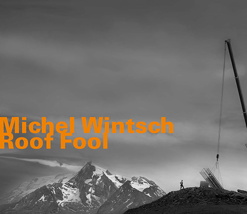 Wintsch, Michel : Roof Fool (Hatology)