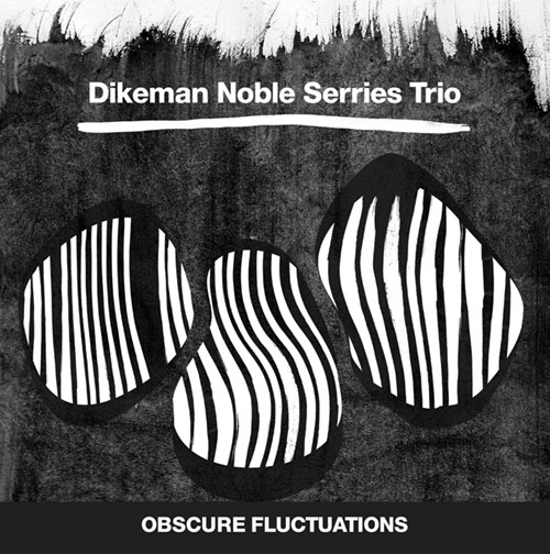 Dikeman Noble Serries Trio: Obscure Fluctuations (Trost Records)
