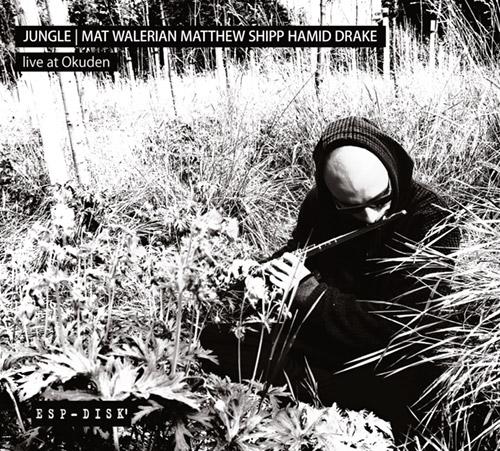 Jungle: Mat Walerian / Matthew Shipp / Hamid Drake: Live at Okuden [2 CDs] (ESP-Disk)