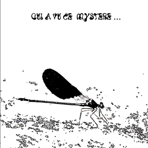 Brousseloux, Augustin / Jean-Marc Foussat / Quentin Rollet : Qui A Vu Ce Mystere... (Improvising Beings)