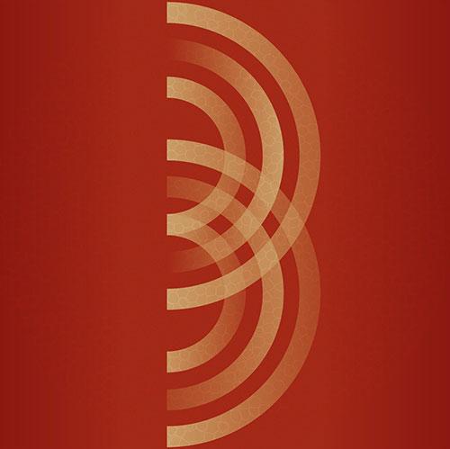 Ballister: Low Level Stink [VINYL & DVD] (Dropa Disc)