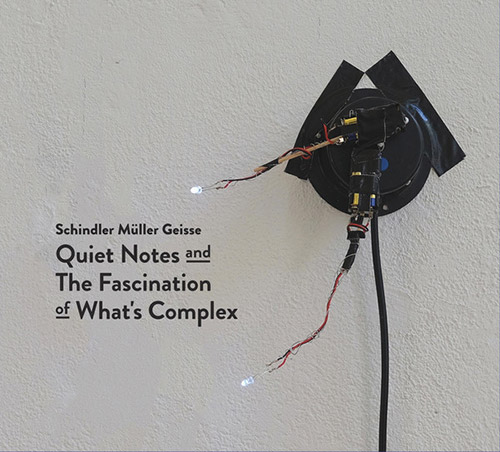 Schindler / Muller / Geisse: Quiet Notes and The Fascination of What's Complex [2 CDs] (Creative Sources)