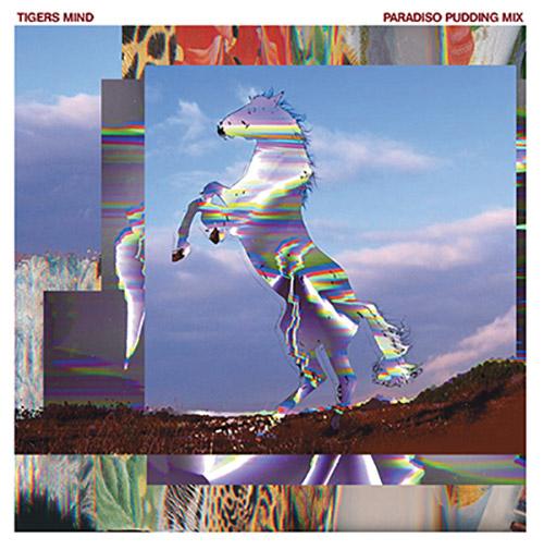 Tigers Mind: Paradiso Pudding Mix (JVTLANDT)