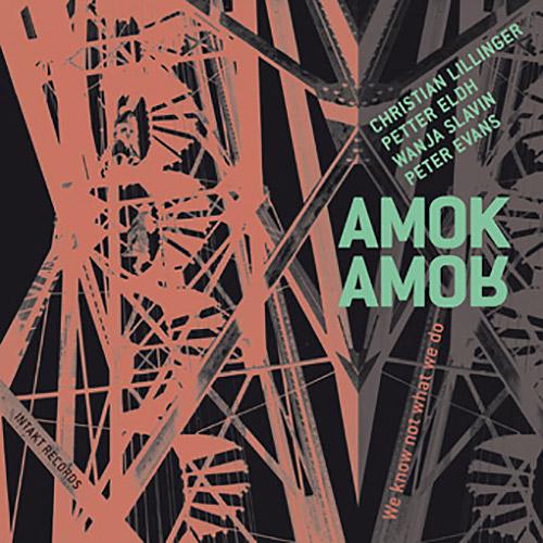 Amok Amor (Liilinger / Eldh / Slavin / Evans): We Know Not What We Do (Intakt)
