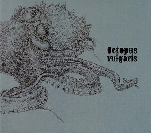 Octopus (Rodrigues / Humm / Curado / Piosik / Hencleeday / Almeida / Santos / Godinho): Vulgaris (Creative Sources)