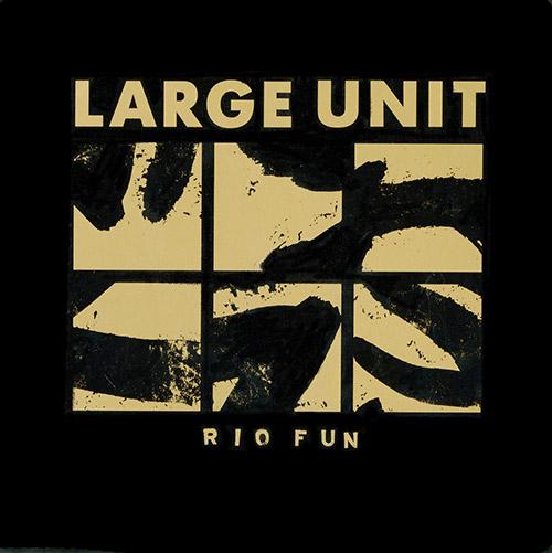 Large Unit: Rio Fun [VINYL] (PNL)