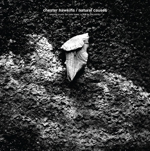 Hawkins, Chester: Natural Causes - Original Music For Pale Trees, A Film By Tim Ashby [VINYL] (Intangible Arts)