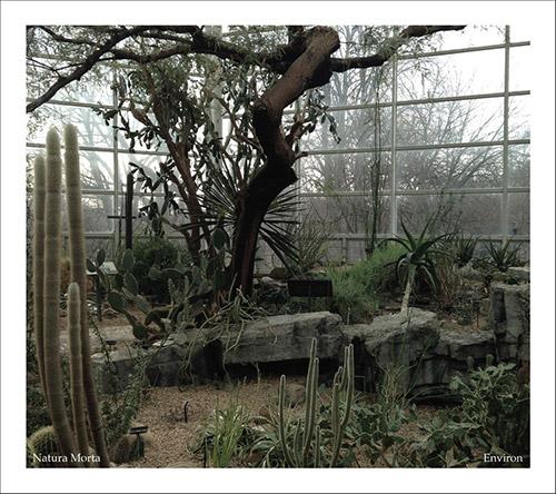 Natura Morta (Loriot / Ali / Costa): Environ (Neither/Nor Records)