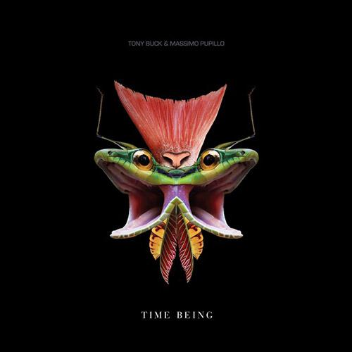 Buck, Tony / Massimo Pupillo: Time Being [VINYL] (Trost Records)