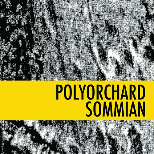Polyorchard (Pence / Jackson / Menestres / Ruccia / Phaneuf): Sommian (Out & Gone Records)