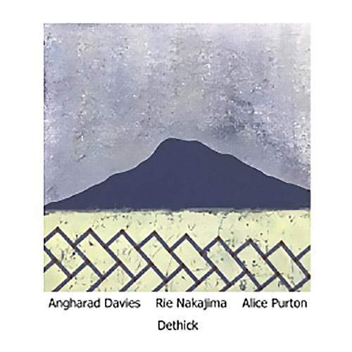 Davies, Angharad / Rie Nakajima / Alice Purton: Dethick (Another Timbre)