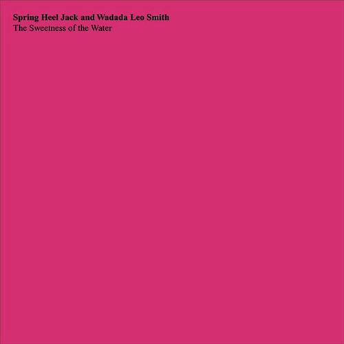 Spring Heel Jack / Wadada Leo Smith: The Sweetness of the Water [VINYL] (Treader)