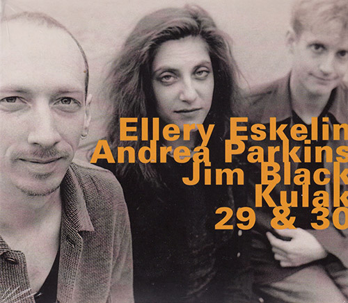 Eskelin, Ellery / Andrea Parkins / Jim Black: Kulak, 29 & 30 (Hatology)