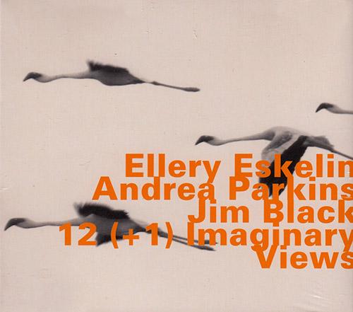 Eskelin, Ellery w/ Andrea Parkins / Jim Black : 12 (+1) Imaginary Views (Hatology)