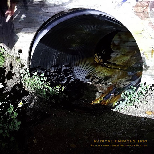 Radical Empathy Trio: Reality and Other Imaginary Places [VINYL] (ESP-Disk)