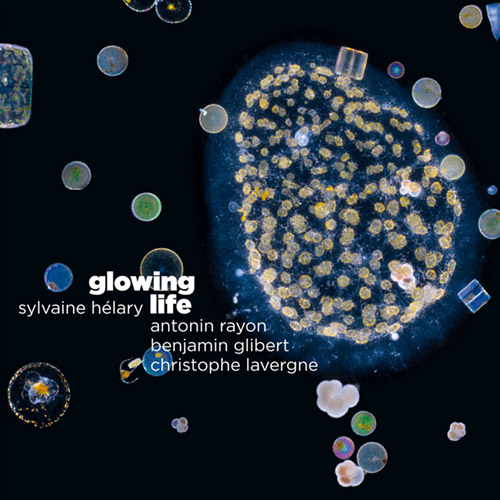 Helary / Rayon / Gilbert / Lavergne: Glowing Life (Ayler)