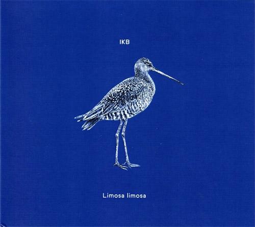 IKB: Limosa Limosa (Creative Sources)