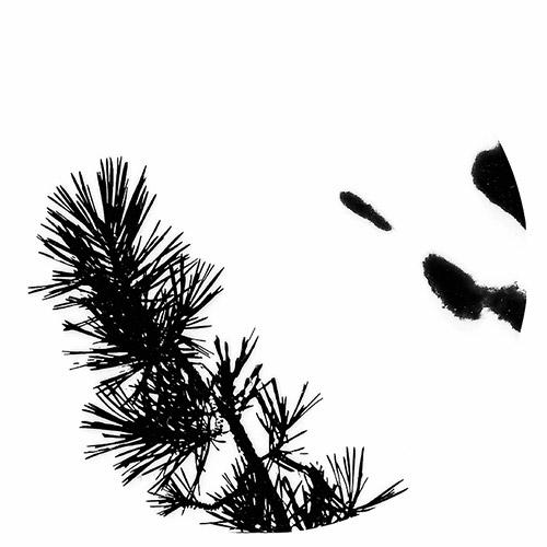 Niblock, Phill [CLEAR VINYL]: MMXX-12: Browned (Matiere Memoire)