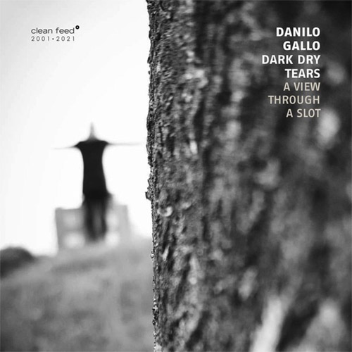 Gallo, Danilo Dark Dry Tears (Gallo / Milesi / Bigoni / Black / feat: Lorenzo Corti): A View Through (Clean Feed)