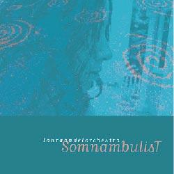 Andel, Laura: Somnambulist
