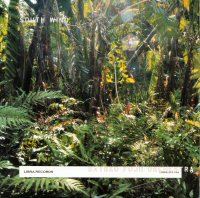 Fujii Orchestra, Satoko: South Wind (Libra)