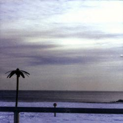 Dorner / Kapian / Chamy: Absence
