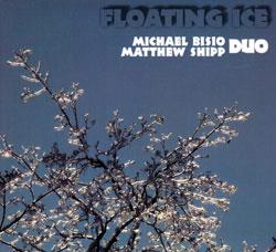 Bisio, Michael / Matt Shipp Duo: Floating Ice (Relative Pitch)