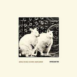 Trzaska, Mikolaj / Olie Brice / Mark Sanders: Riverloam Trio [2 LPs]
