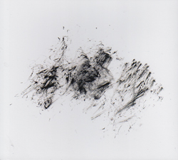 Natura Morta (Ali / Loriot / Costa): Decay