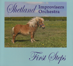 Shetland Improvisers Orchestra: First Steps